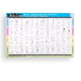 VMI Developmental Wall Chart